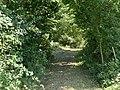 Bois Cormorey St Cyr Menthon 6.jpg