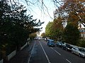 Bournemouth , Winton - Wimborne Road - geograph.org.uk - 1595424.jpg