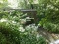 Bridge over the Corfe River - geograph.org.uk - 1569013.jpg