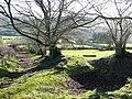 Bridleway off Cefn Gledwen - geograph.org.uk - 669196.jpg
