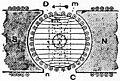 Britannica Dynamo 31.jpg