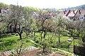 Brno Žabovřesky zahrady.jpg