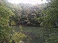 Bronx Zoo - New York - USA - panoramio (3).jpg