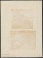 Buceros bicornis - 1700-1880 - Print - Iconographia Zoologica - Special Collections University of Amsterdam - UBA01 IZ19300208.tif