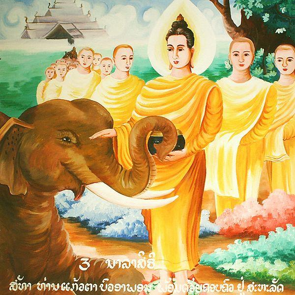 File:Buddha with the Elephant Nalagiri.jpg