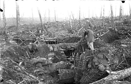 Forest of Argonne in October 1915 ravaged by shellfire. Bundesarchiv Bild 104-0152, Argonnen, zerschossener Wald, Stellung.jpg
