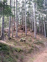 File:Burg Klingenstein, Hügel 1.jpg