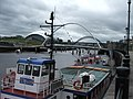 Busy looking Tyne - geograph.org.uk - 1323777.jpg