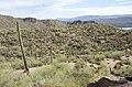 Butcher Jones Trail to Pinter's Point Loop, Tonto National Park, Saguaro Lake, Ft. McDowell, AZ - panoramio (52).jpg