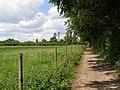 By-way to Whiteshute Bridge - geograph.org.uk - 451616.jpg