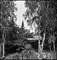 CH-NB - Finnland- Landschaft - Annemarie Schwarzenbach - SLA-Schwarzenbach-A-5-17-077.jpg