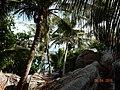COCOS ISLAND 2015 - panoramio (13).jpg