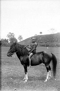 COLLECTIE TROPENMUSEUM Balinees jongetje te paard TMnr 10005102.jpg