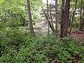 CP 80 - panoramio.jpg