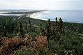CSIRO ScienceImage 204 Fitzgerald River National Park.jpg