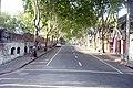 Calle Juan D. Jackson - panoramio.jpg