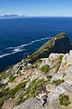 Cape Point 2014 24.jpg