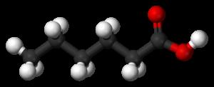 Hexanoic acid - Image: Caproic acid 3D balls