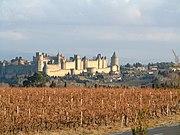 Carcassonne-vignes-2