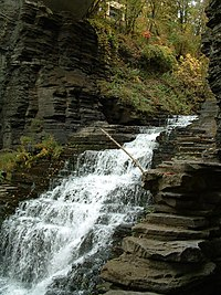 Cascadilla Creek gorge, just south of the Cornell campus.