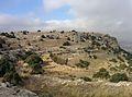 Castellar de Meca 07.jpg