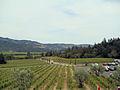 Castello di Amorosa Winery, Napa Valley, California, USA (7721359474).jpg