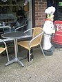 Cat outside the café at Headley - geograph.org.uk - 1709904.jpg