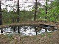 Cekule, Stopiņu novads, LV-2118, Latvia - panoramio (2).jpg