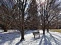 Chadwick Arboretum (31820850333).jpg