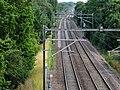 Chelmsford, UK - panoramio (13).jpg