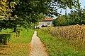 Chemin de baguenaude près du Grand-Champ (1).jpg