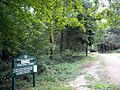 Cheriton Wood - Closed^ - geograph.org.uk - 255431.jpg