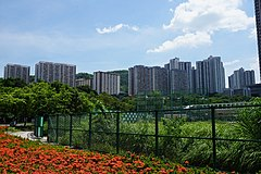 Cheung Hong Estate (revised).jpg
