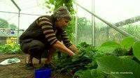File:ChristenUnie TV-spot- Portret Caroline Snoeij, eigenaresse zorgboerderij.webm