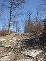 Cima del Col De Luca (844 m. s.l.m.) dalla strada di crinale - panoramio.jpg
