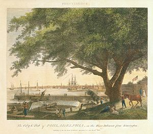 "Penn Treaty Park - The ""Treaty Elm,"" Birch's Views of Philadelphia (1800)."