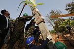 Cobra Gold participants raise pillars, commence humanitarian civic assistance 140125-M-LT992-048.jpg