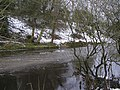 Cold Camowen River - geograph.org.uk - 1633811.jpg