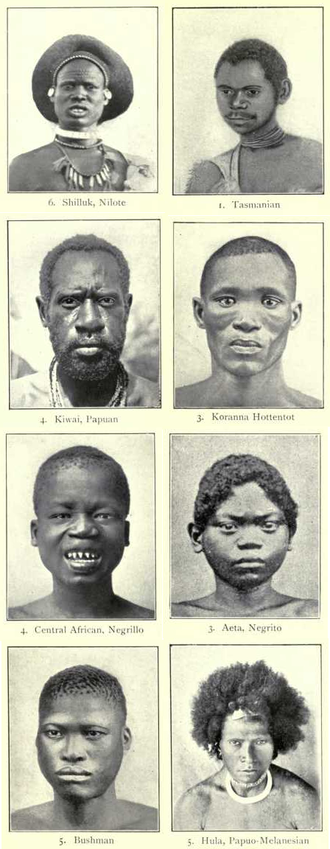 "Negroid - Illustrations of ""racial types"" from Man, Past and Present (1899) by Augustus Henry Keane"