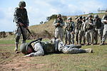 Combat training 130418-F-VI983-055.jpg