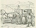 Comic History of Rome p 205 Roman Lady Shopping.jpg