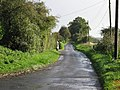 Common Road - geograph.org.uk - 294561.jpg