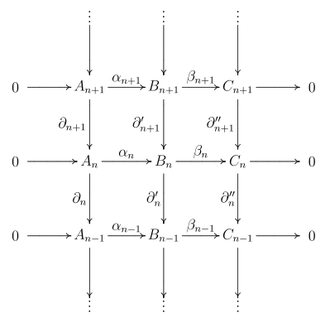 Zig-zag lemma - commutative diagram representation of a short exact sequence of chain complexes