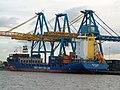 Container Terminal, Queen Elizabeth Dock - geograph.org.uk - 389161.jpg