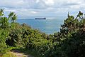 Container ship from the Polsteam Line in Falmouth Bay (2781440955).jpg