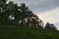Controluce - panoramio (4).jpg