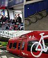 Copenhagen biketrain collage.jpg