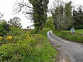 Country lane at Polladooey - geograph.org.uk - 1302679.jpg