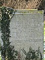 Covering with ivy - geograph.org.uk - 1656186.jpg