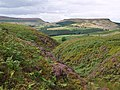 Cowkill Beck - geograph.org.uk - 528800.jpg
